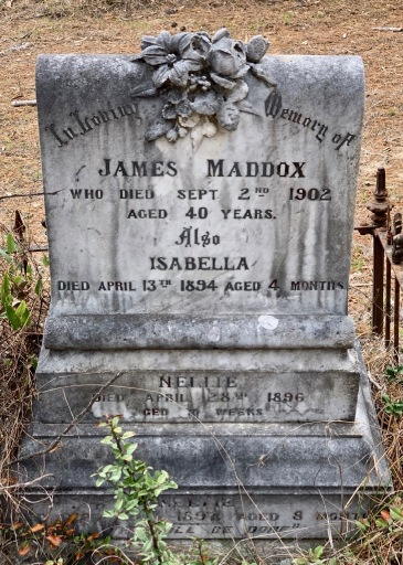Headstone of James Maddox, died Hillgrove, 1902